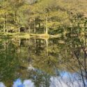 Yew Tree Tarn